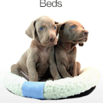 Finding the Best Dog Bed For Your Loved One This Year